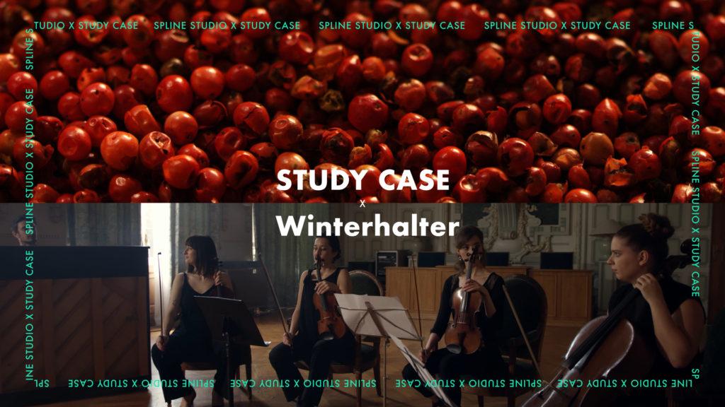 Study Case spline studio winterhalter